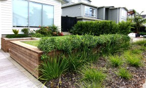 Cost Of Landscaping Your Backyard In New Zealand Zones within How Much Is It To Landscape A Backyard