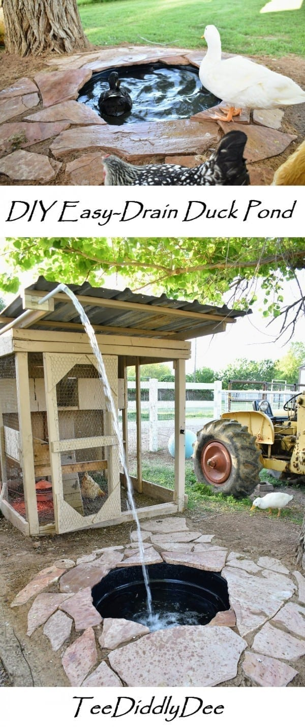 Diy Attractive Easy Drain Duck Pond Provides Ducks With Swimming Pool within 13 Some of the Coolest Initiatives of How to Upgrade Backyard Duck Pond Ideas