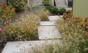 Low Maintenance Landscaping Ideas Low Maintenance Shrubs Natural regarding Low Maintenance Backyard Landscaping