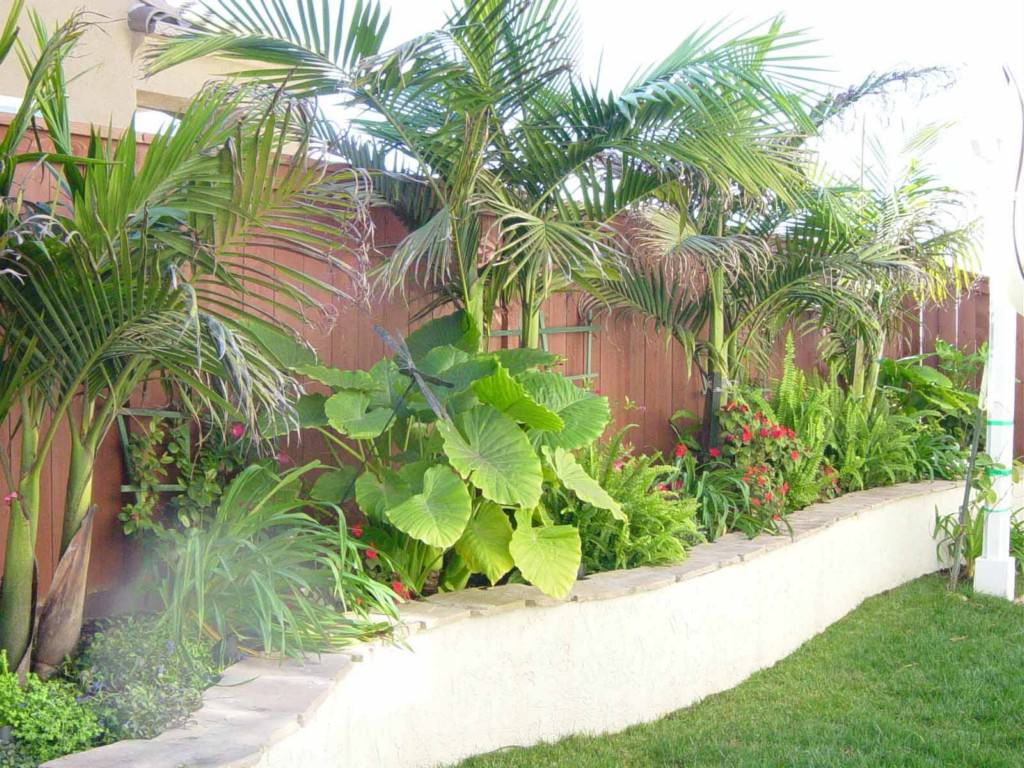 Modern Tropical Landscape Design Three Beach Boys Landscape Best throughout Tropical Backyard Landscaping