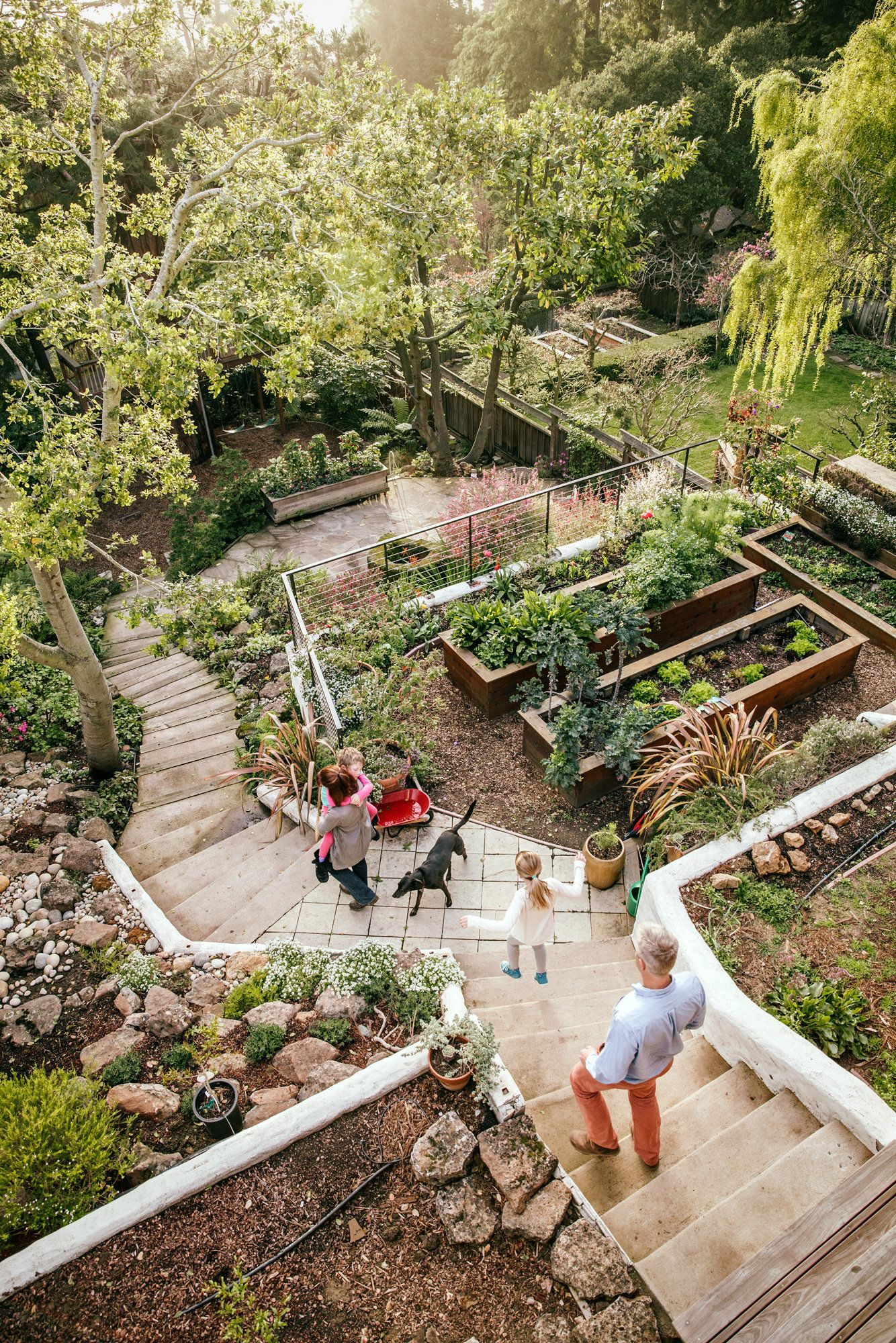 The San Francisco Envy Chain Garten Pinterest Backyard Sloped inside 13 Some of the Coolest Ways How to Improve Backyard Slope Ideas