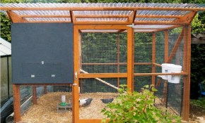 20 Best Diy Chicken Coop Ideas For Small Backyard Design Indecost regarding Backyard Chicken Coop Ideas