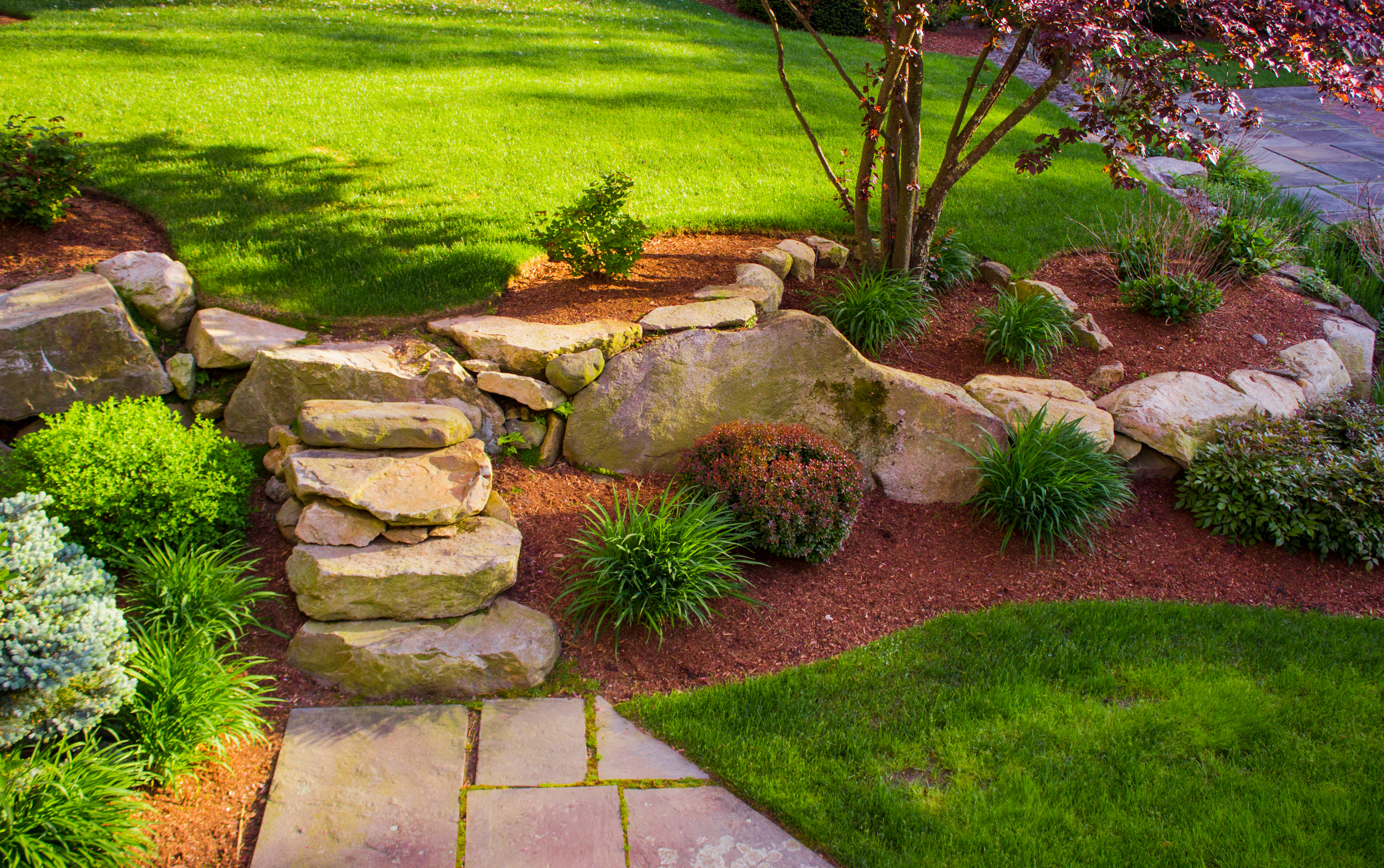 5 Ideas For Your New Backyard Landscape Atlantic Maintenance Group in New Backyard Ideas