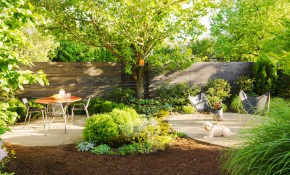 Backyard Ideas For Dogs Sunset Magazine for Dog Friendly Backyard Landscaping Ideas