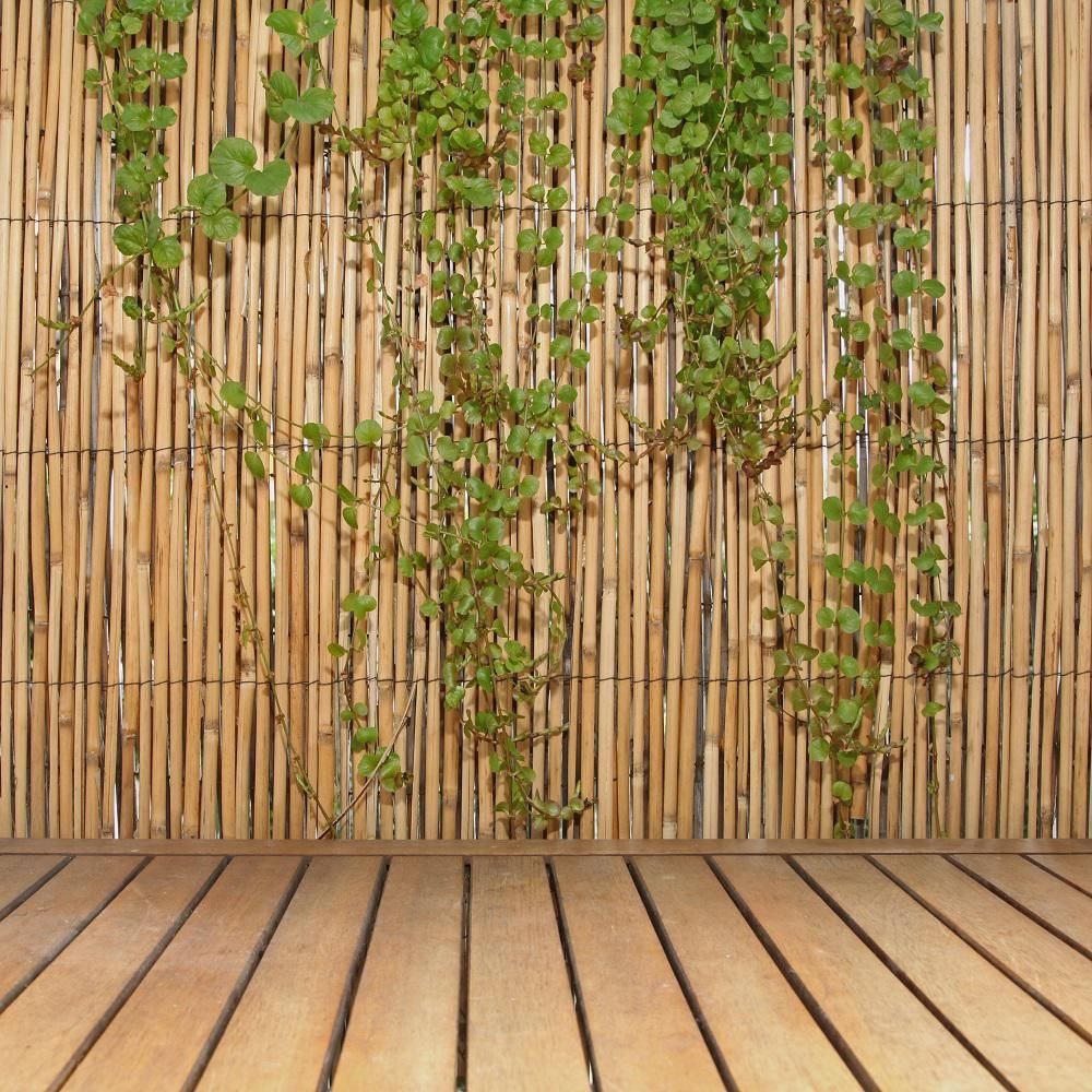 Backyard X Scapes 6 Ft H X 16 Ft L Natural Jumbo Reed Bamboo inside Backyard X Scapes Rolled Bamboo Fencing
