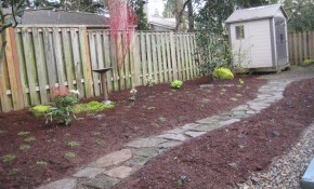 Cheap Backyard Ideas Dog Friendly Our Transformed Dog Landscaping within Landscaping Ideas For Backyard With Dogs