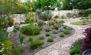 Drought Landscaping The Landscape And Tree Company regarding 12 Smart Concepts of How to Build Backyard Landscaping Company