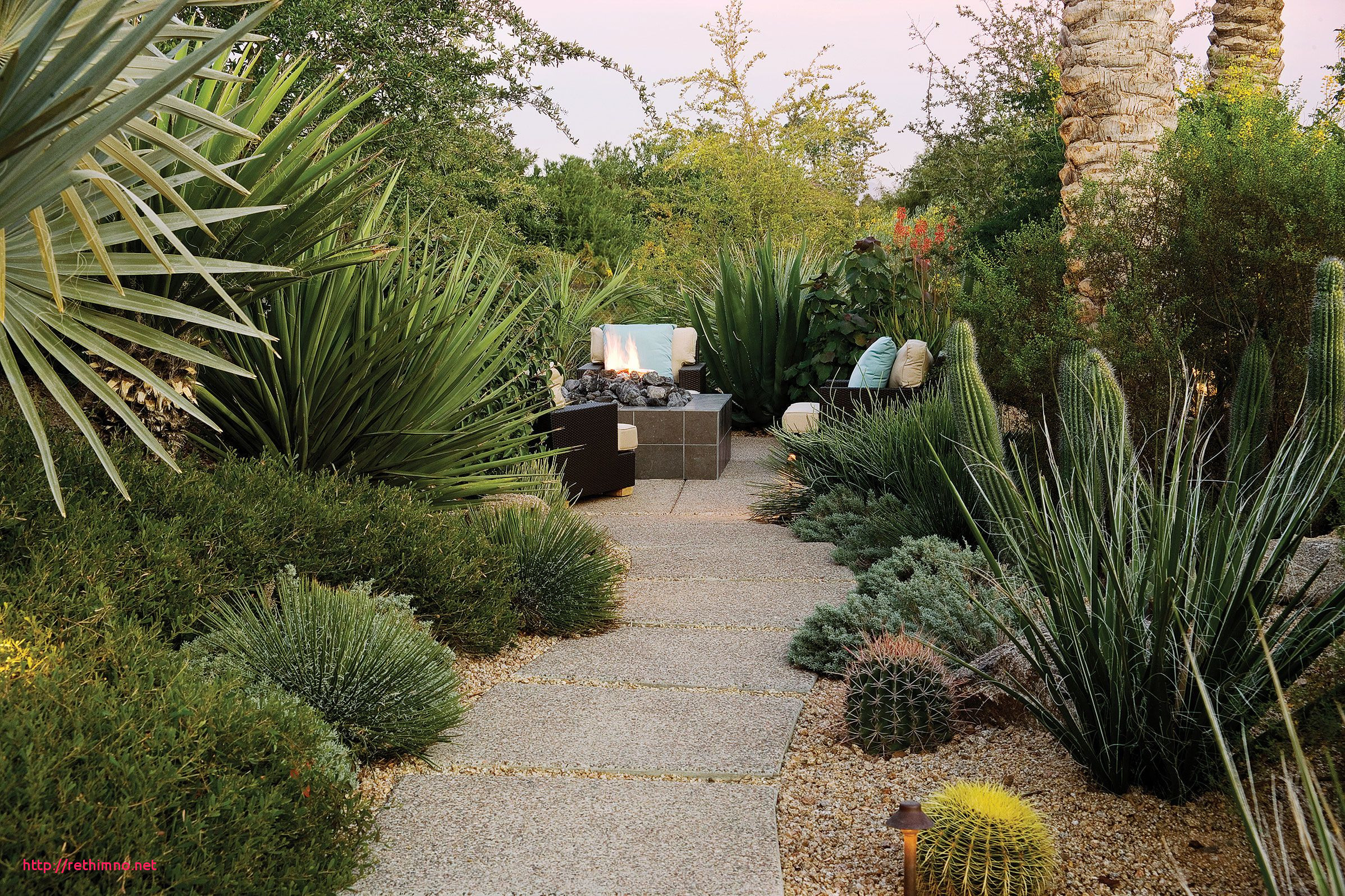 Luxury Desert Landscape Backyard Ideas Rethimno pertaining to 14 Genius Designs of How to Craft Backyard Desert Landscaping