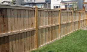 Privacy Fence Ideas For Backyard And Terrace Ducksdailyblog Fence within 13 Clever Concepts of How to Craft Privacy Fences For Backyards