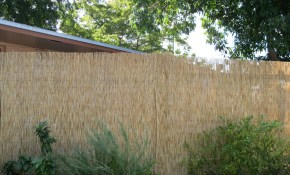 1 Landscaping Landscaping Ideas For Backyard X Scapes Bamboo Fencing intended for Backyard XScapes Reed Fencing