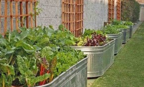 15 Raised Bed Garden Design Ideas for Portable Backyard Fence