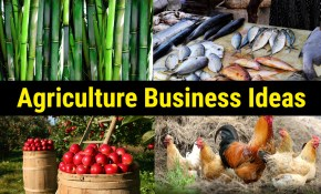 50 Most Profitable Agriculture Business Ideas Updated 2019 inside Backyard Business Ideas