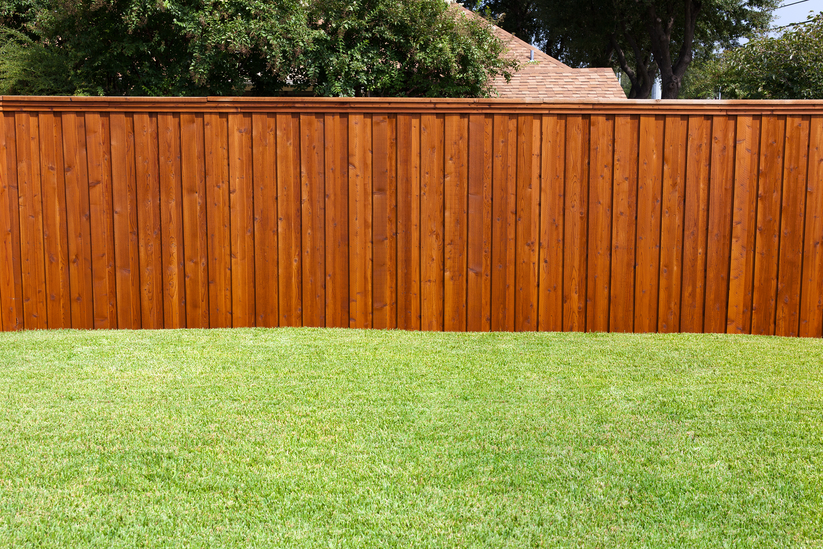6 Reasons To Install A Fence Around Your Backyard Themocracy in Fence In Backyard