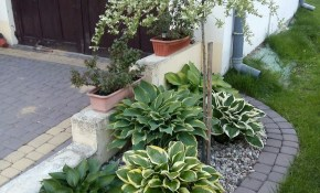 Amazing Modern Rock Garden Ideas For Backyard 3 Landscaping With regarding Backyard Rock Garden Ideas