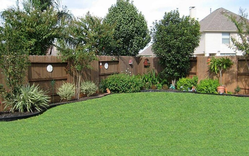 Backyard Landscaping Ideas For Privacy Backyardidea in Inexpensive Backyard Landscaping