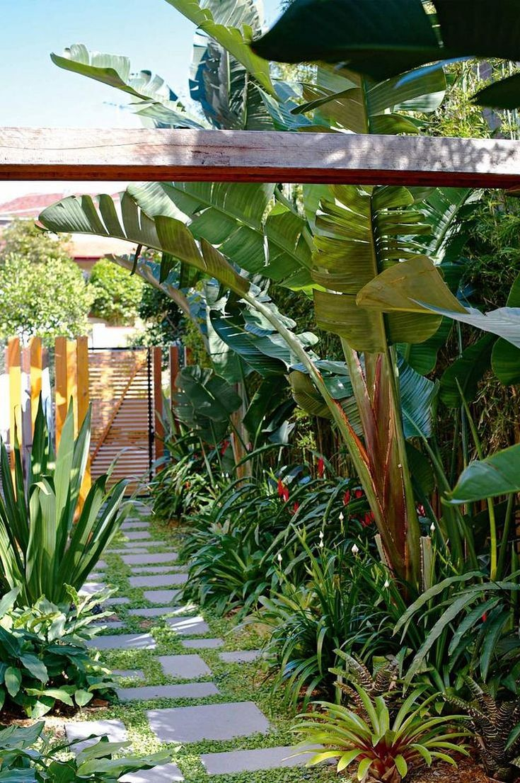 Best 25 Tropical Backyard Ideas On Pinterest Tropical Landscaping pertaining to 14 Smart Designs of How to Upgrade Backyard Tropical Ideas