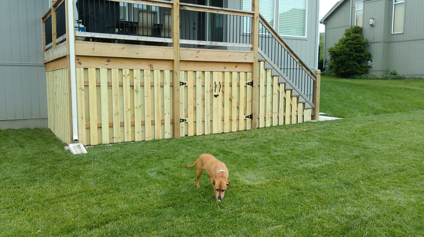 Fence Under Deck Storage Shadow Box Fence Deck Apron My in 15 Some of the Coolest Tricks of How to Make Backyard Fences And Decks