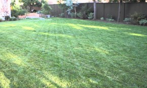 How To Landscape A Big Backyard Landscaping Garden Design throughout How To Landscape A Backyard