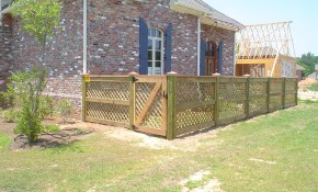 If You Cant Afford To Fence In Your Entire Back Yard Just Fence In with Backyard Fence For Dogs