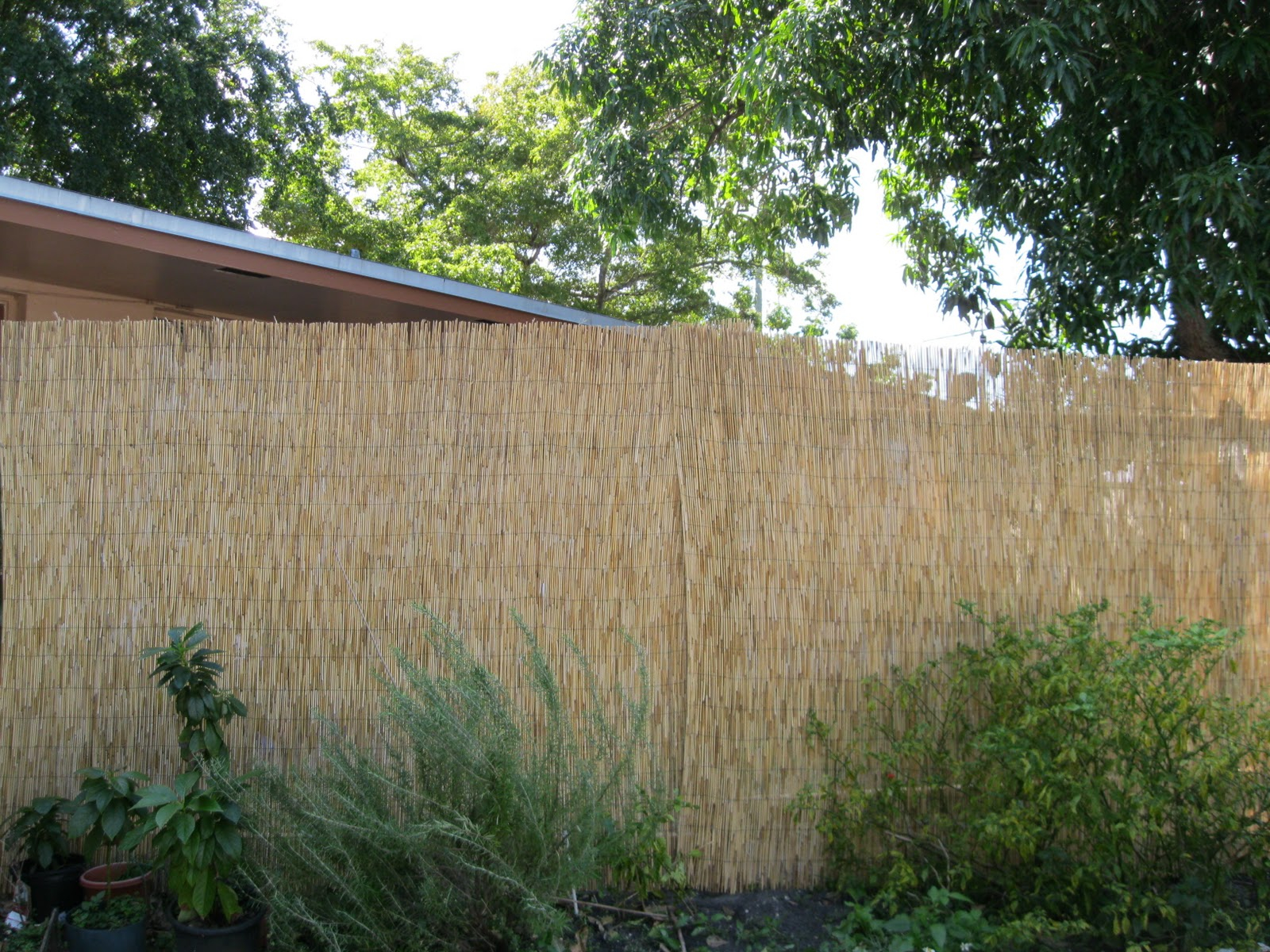 1 Landscaping Landscaping Ideas For Backyard X Scapes with regard to Backyard XScapes Rolled Bamboo Fencing