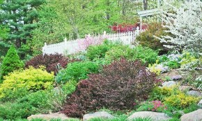 13 Hillside Landscaping Ideas To Maximize Your Yard in 14 Genius Ways How to Craft Landscaping Ideas For Downward Sloping Backyard