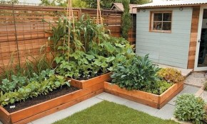 50 Inspiring Small Vegetable Garden Ideas Gardenideaz within 14 Some of the Coolest Concepts of How to Makeover Small Backyard Vegetable Garden Ideas