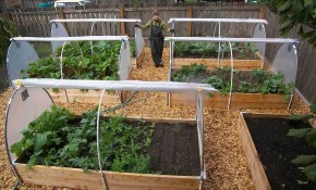 Affordable Backyard Vegetable Garden Designs Ideas 16 for 10 Some of the Coolest Initiatives of How to Craft Backyard Vegetable Garden Ideas