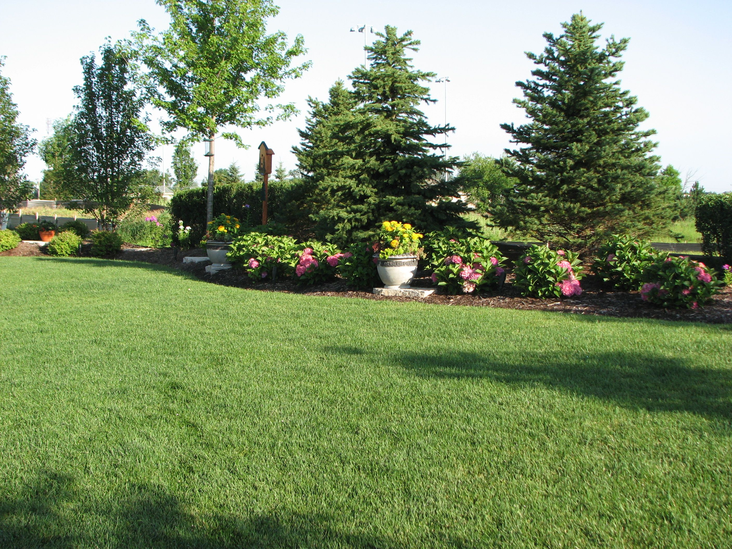 Backyard Landscaping For Privacy Existing Home Landscaping intended for Backyard Landscaping Ideas For Privacy