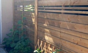 Diy Backyard Privacy Fence Ideas On A Budget 49 Lets Build in 15 Genius Concepts of How to Make Backyard Privacy Wall Ideas