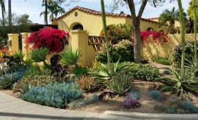 Garden Landscape Designer San Diego Landscaping With Succulents with regard to 13 Clever Ideas How to Build Backyard Landscaping Ideas San Diego