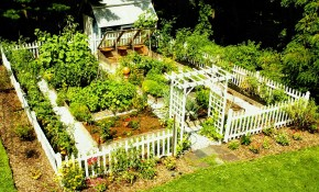 Home Vegetable Garden Design Phenomenal Best Small Super with regard to Vegetable Garden Design Ideas Backyard