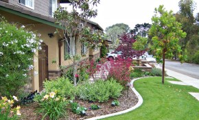 Landscaping Ideas San Diego Sard Info with regard to 13 Clever Ideas How to Build Backyard Landscaping Ideas San Diego