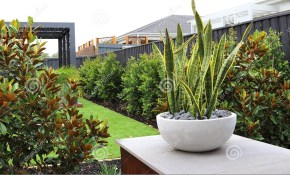 Modern Backyard Design Ideas Stock Photo Image Of Exterior pertaining to Modern Backyard Design Ideas