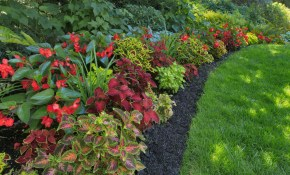 Planning Landscape For Shady Areas with 13 Awesome Concepts of How to Make Shaded Backyard Ideas