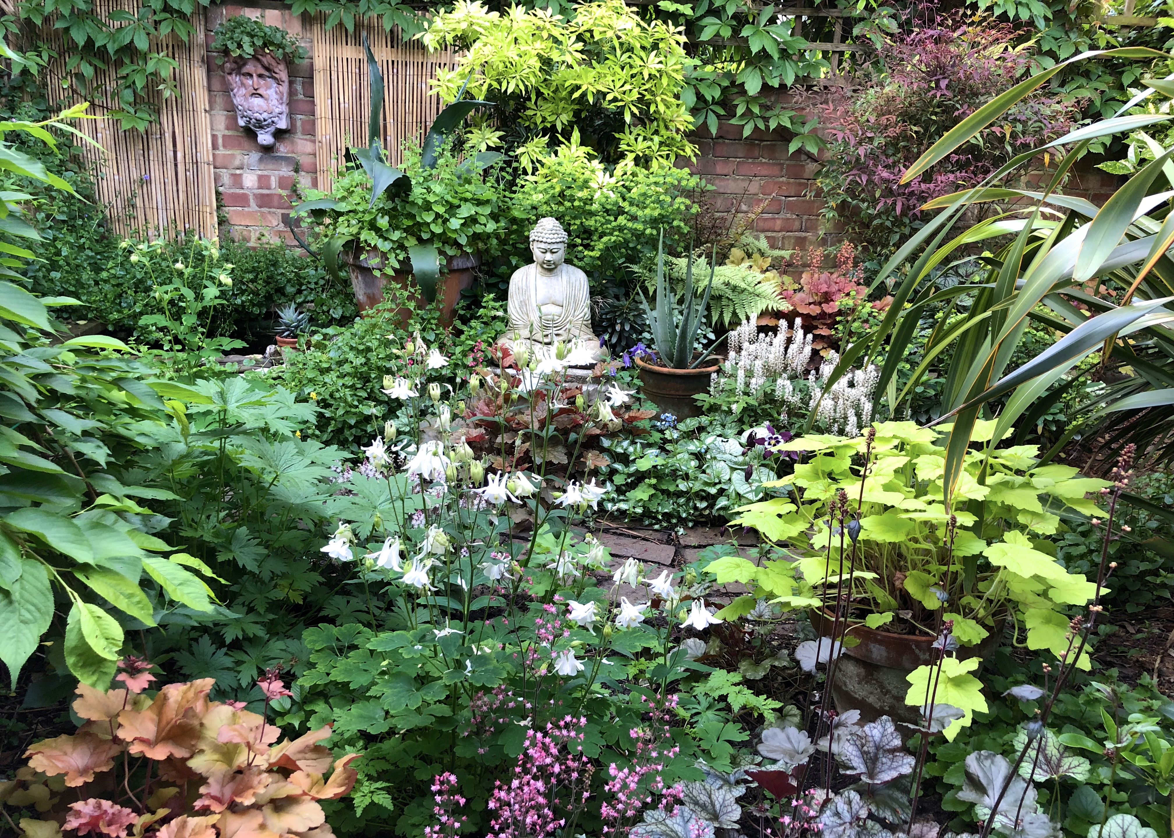 Ten Top Tips For Small Shady Urban Gardens The Frustrated Gardener pertaining to Shaded Backyard Ideas