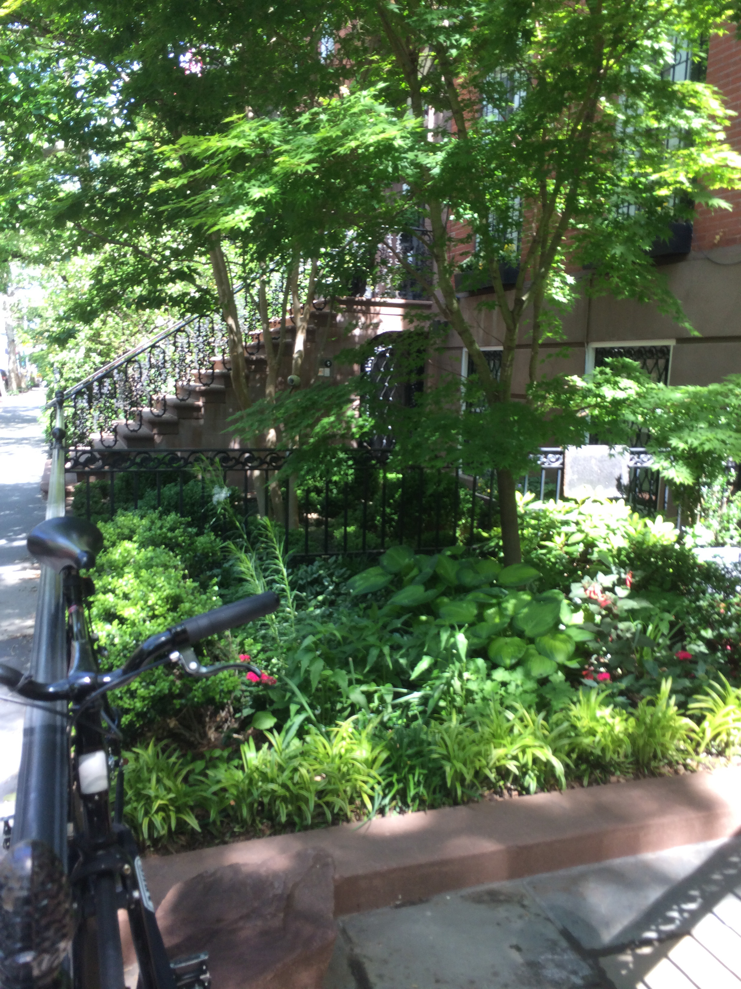Were In A Tight Spot Landscape Design For Small Urban Spaces for 13 Awesome Concepts of How to Make Shaded Backyard Ideas