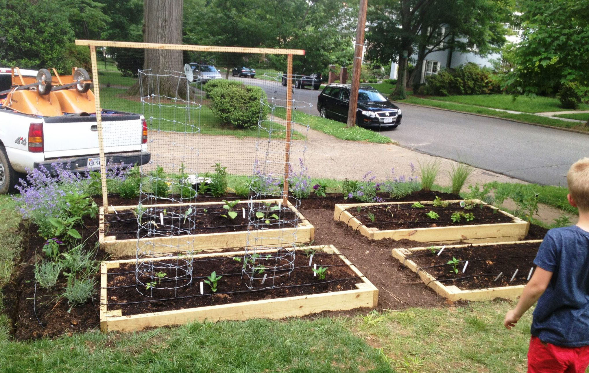 Why You Should Plant A Front Yard Veggie Garden pertaining to Backyard Vegetable Garden Ideas
