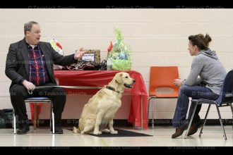 Dog trainer John Wade prompts owner Jen Knapp to call her Golden Retriever, Eddie, off the mat.