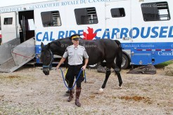 RCMP Constable Peter Edwards walks one of the horses to its truck stall following the ride.