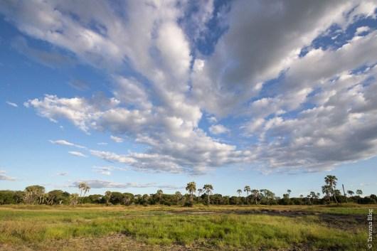Katavi National Park (Tanzanie)