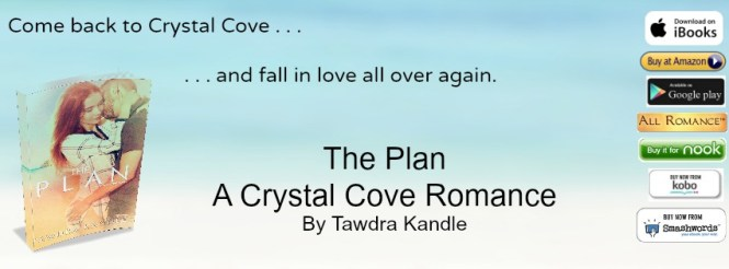 The Plan Banner