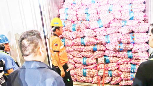 SMUGGLED ONIONS IN VAN. Operatives of the Bureau of Customs - Customs Intelligence and Investigation Service (CIIS) examine the smuggled onions loaded in one of the container vans which they seize at the Manila International Container Port (MICP). The smuggled onions worth more than P4.2 million and placed under the bundles of fresh garlic allegedly came from China. (Photo courtesy of BOC)
