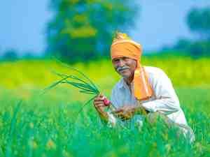 Agricultural credit target