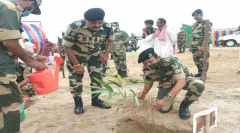 KVIC on Tuesday planted 1000 bamboo saplings at Tanot village in Jaisalmer, in collaboration with the Border Security Force (BSF), Launch Project BOLD in Jaisalmer