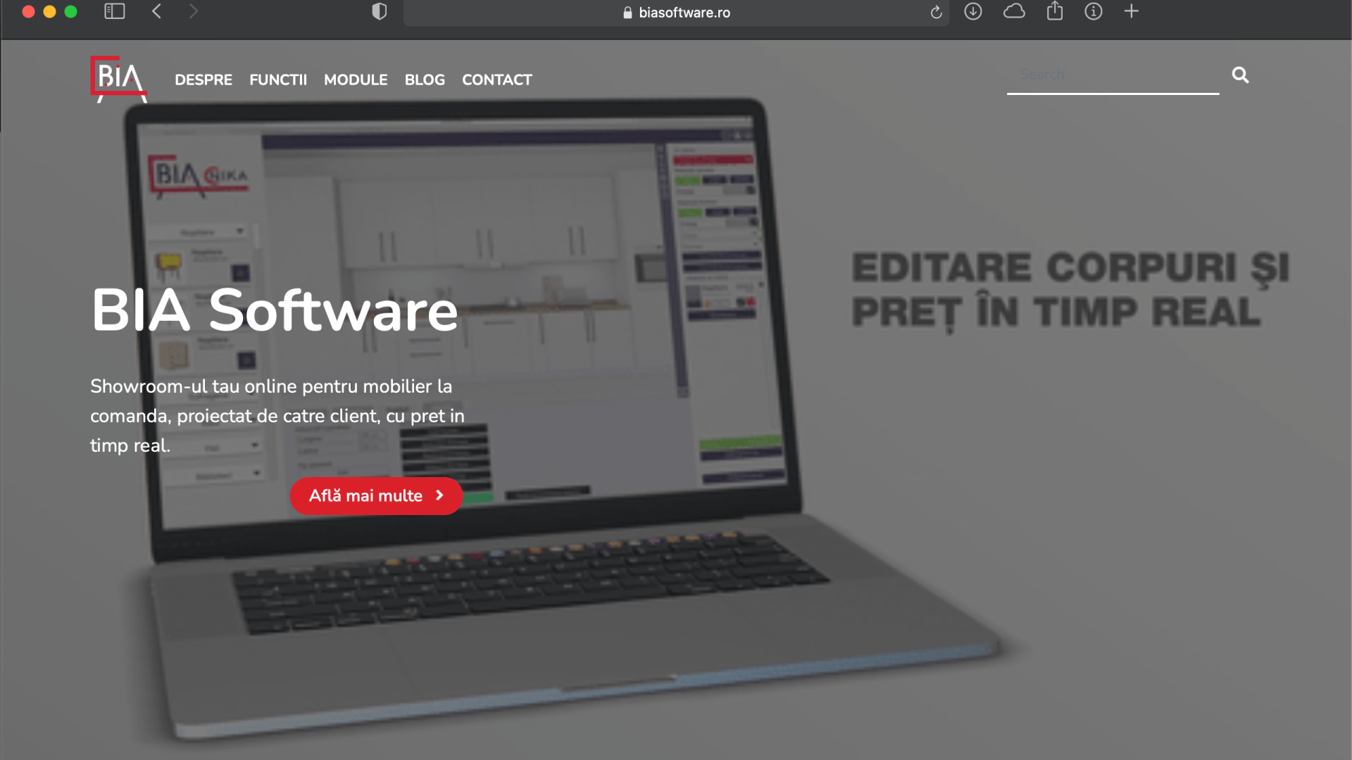 Web Design for BIA Software