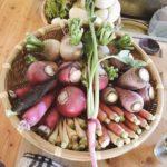 発酵料理を食べ続けた「タヤメシ会」ご参加ありがとうございました。