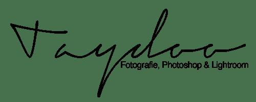 Taydoo Logo groß