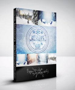 winterwonderland-produktbox