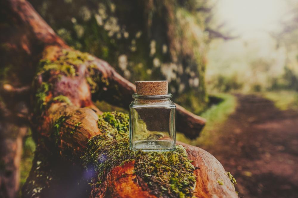 madeira-bottle-jungle-vorher1