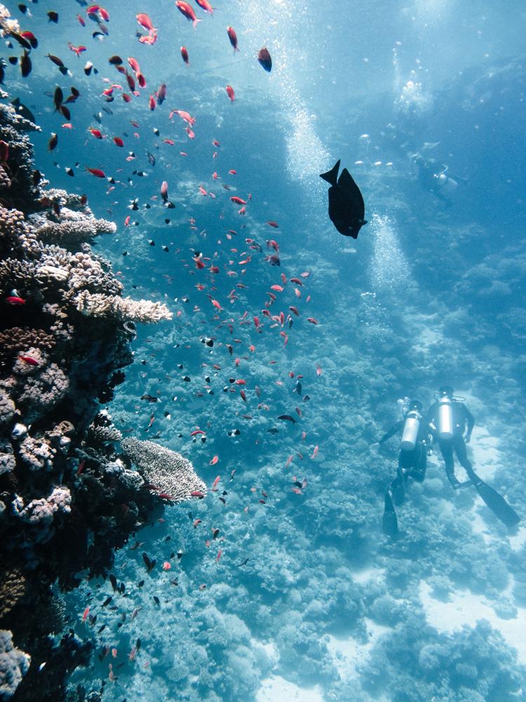 nachher-underwater-film-5